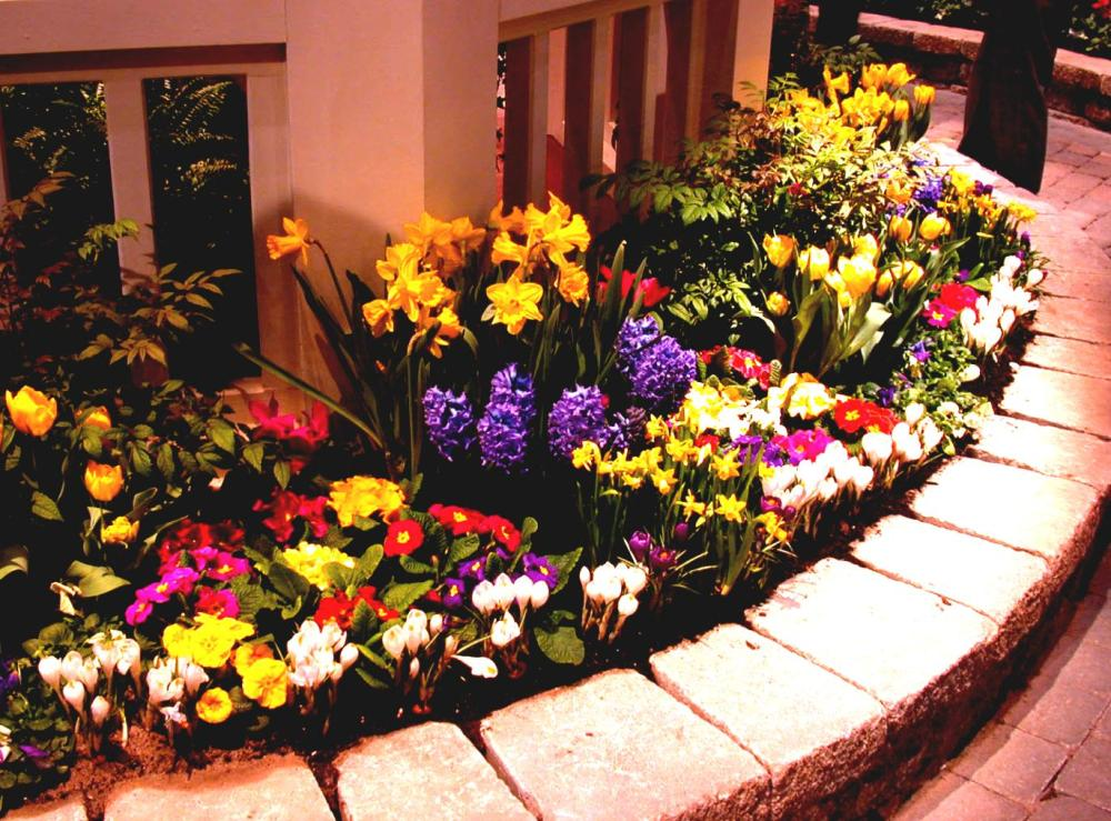 Flower Garden Ideas Around House