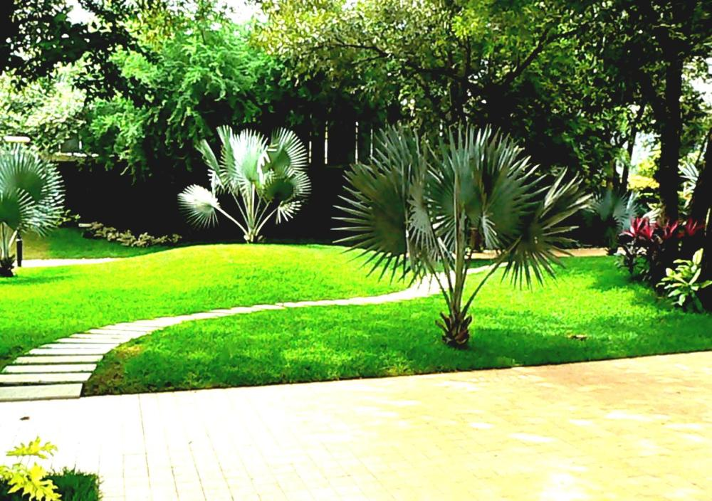 Garden Landscaping Ideas India