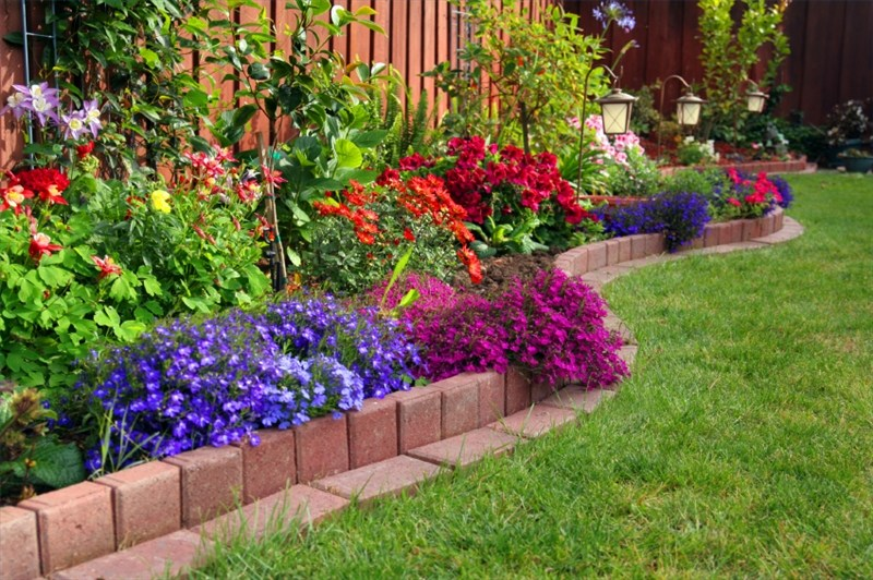 Gardening Ideas On A Budget