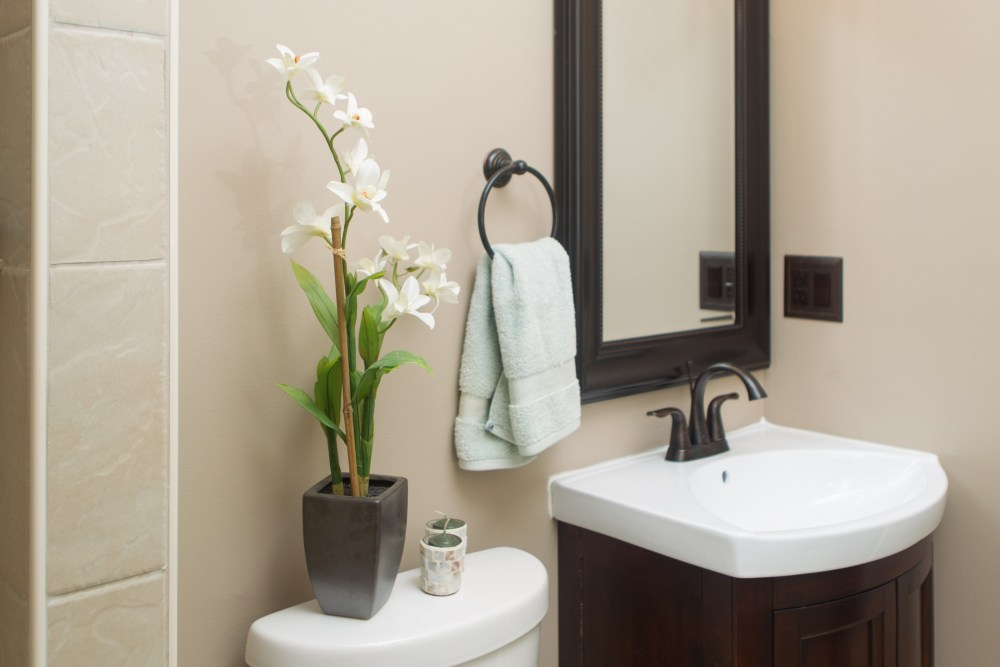 Guest Bathroom Ideas White