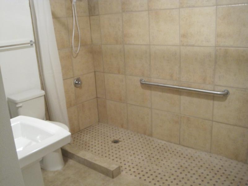 Handicap Bathroom Ideas