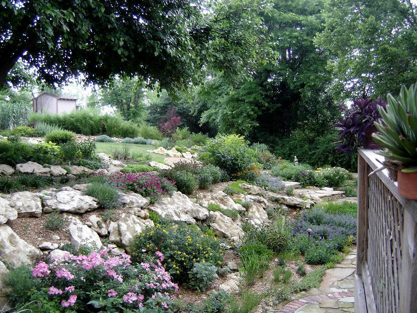 Hillside Landscape Ideas