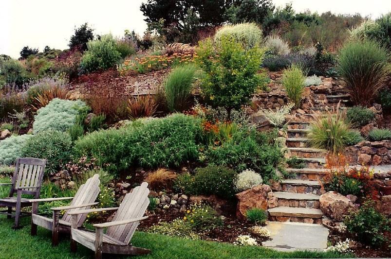 Hillside Landscaping Ideas Photos