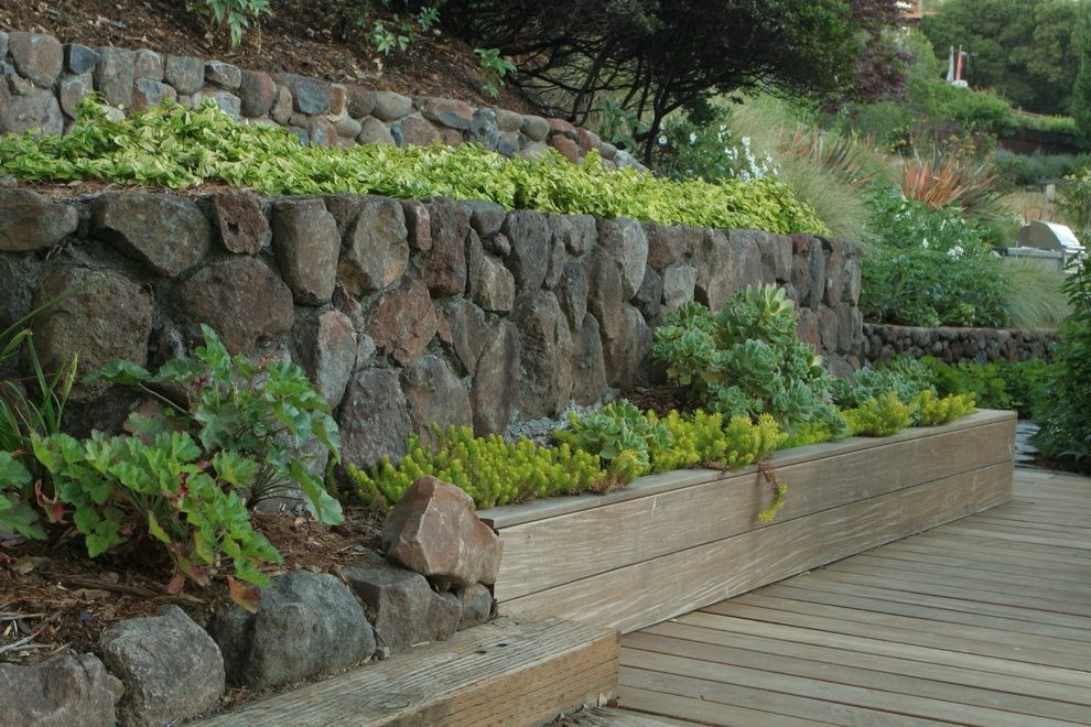 Hillside Planting Ideas