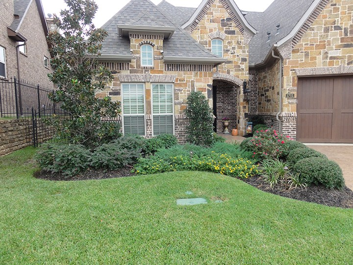 Houston Texas Landscape Ideas