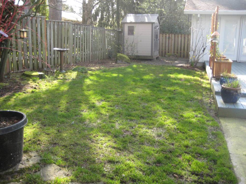 Ideas For Backyard Landscaping With Dogs