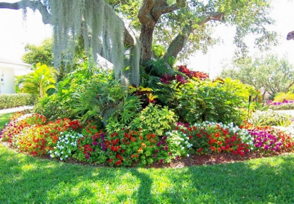 Ideas For Landscaping Around Trees