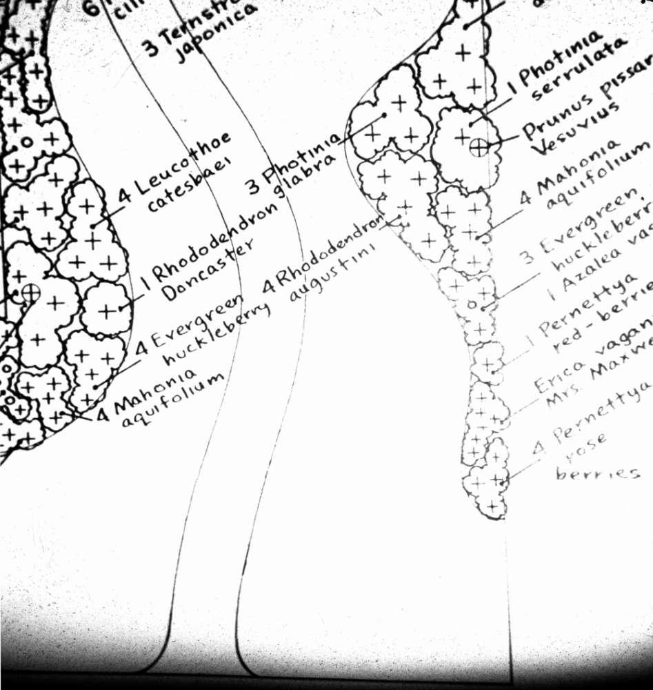 Landscape Border Plans