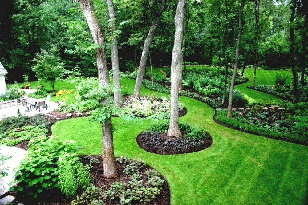 Landscape Ideas For Small Backyards Pictures