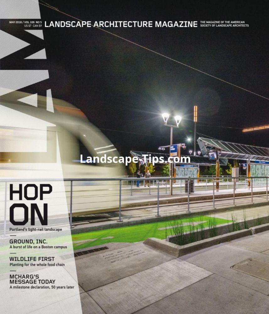 Landscape Lighting Ideas Pdf