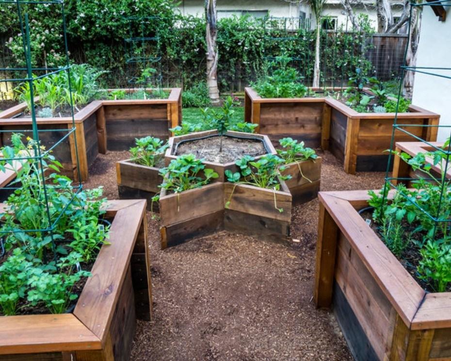 Landscape Timber Garden Ideas