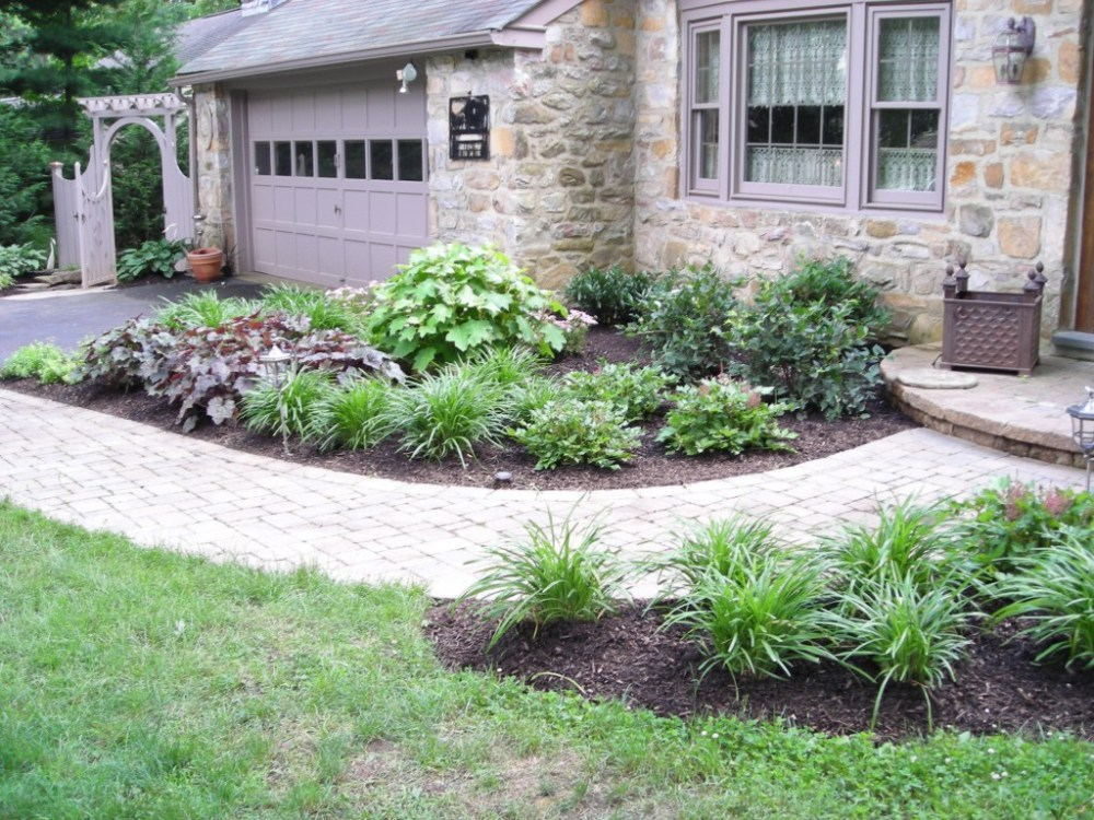 Landscaping Ideas Around Tree Roots