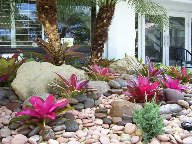 Landscaping Ideas Florida