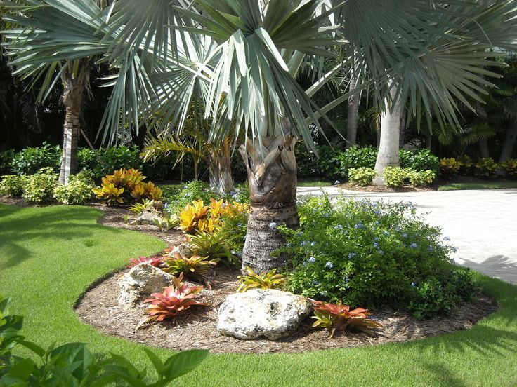 Landscaping Ideas For South Florida