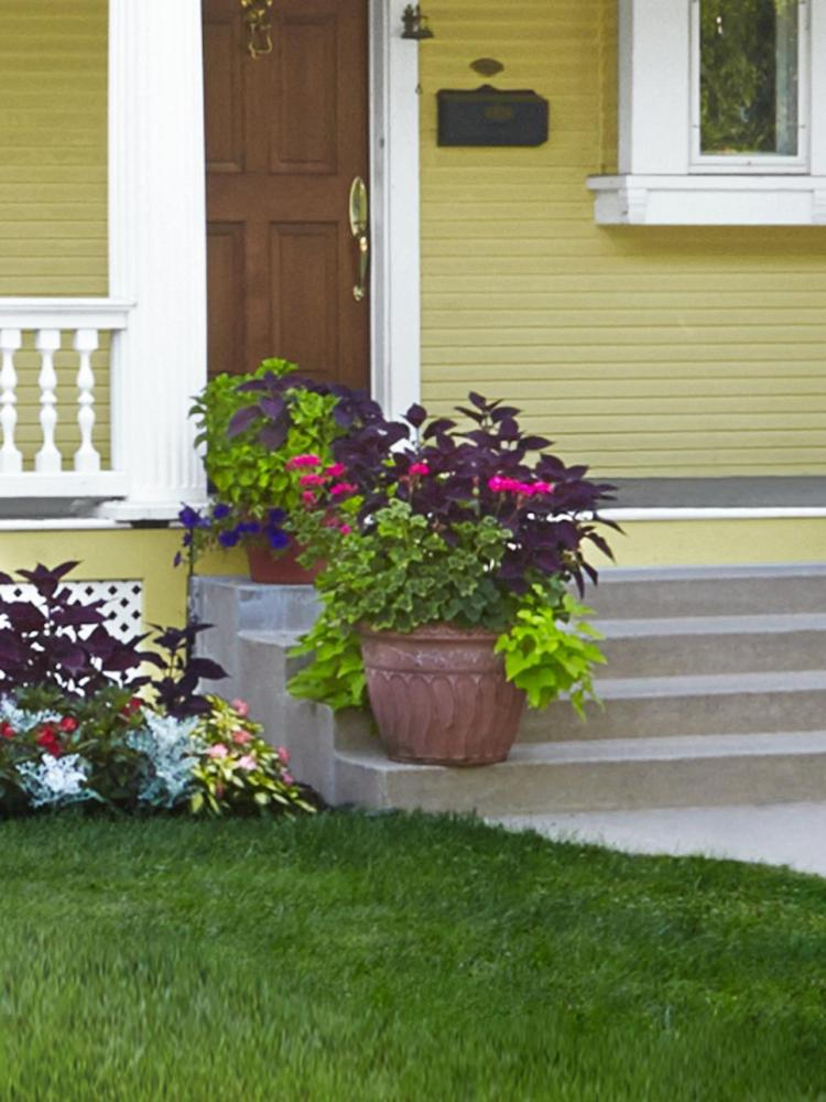 Landscaping Ideas Minneapolis