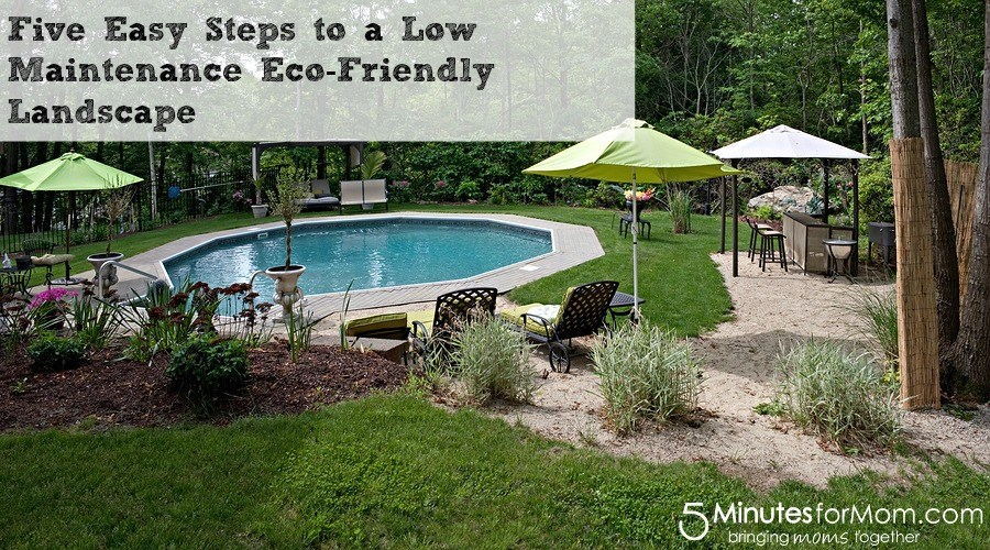 Low Maintenance Landscaping Ideas Around Pool
