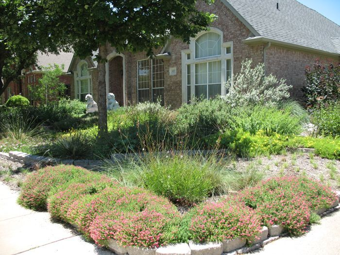 Native Texas Landscape Ideas