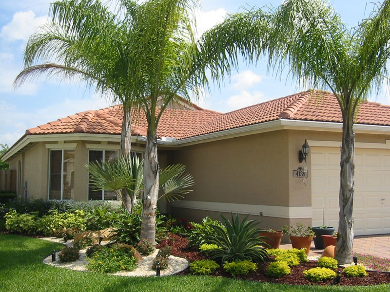 Palm Tree Landscaping Ideas