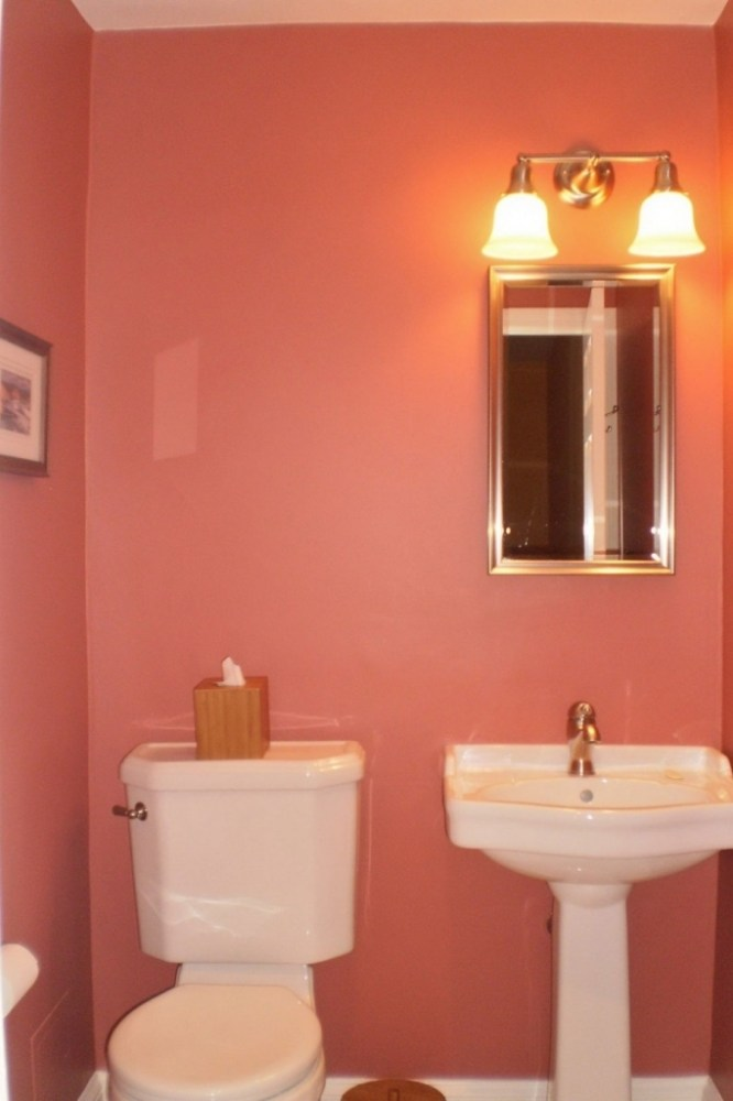 Pink Bathroom Paint Ideas