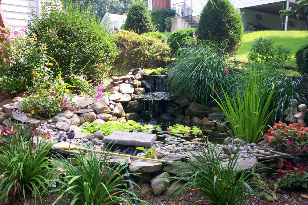 Pond Landscaping Ideas Pictures