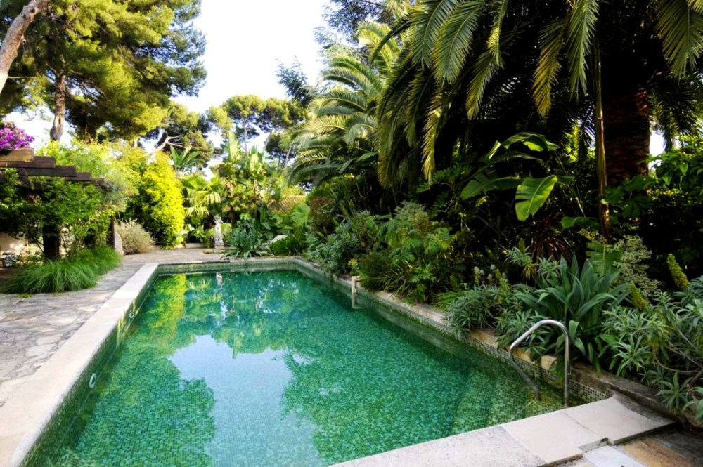 Pool Landscape Ideas Plants