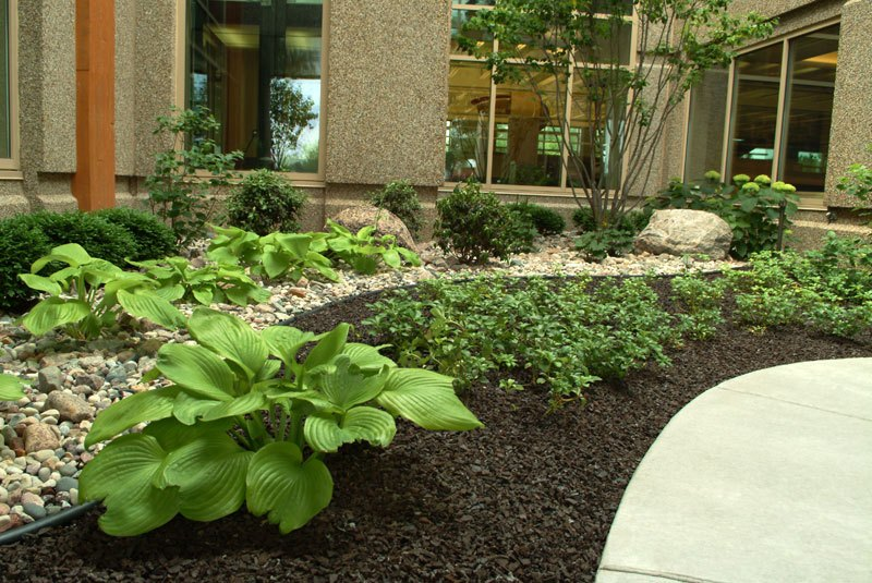 Rubber Mulch Landscaping Ideas