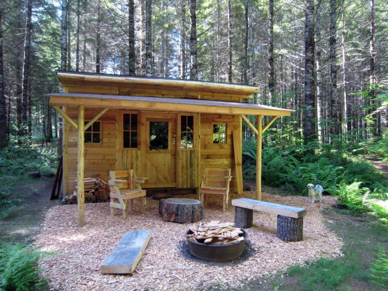 Rustic Cabin Landscaping Ideas