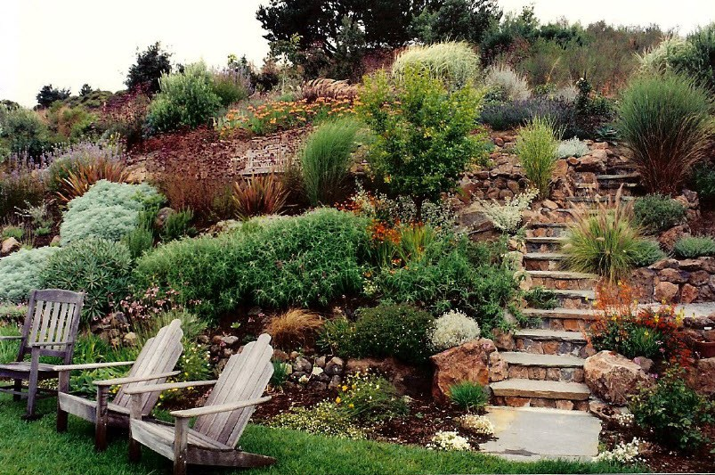 Side Hill Landscaping Ideas