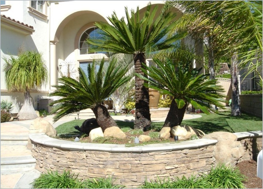 Simple Front Yard Desert Landscaping Ideas