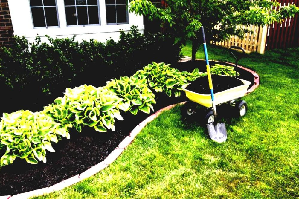 Simple Landscaping Ideas For Front Yard On A Budget