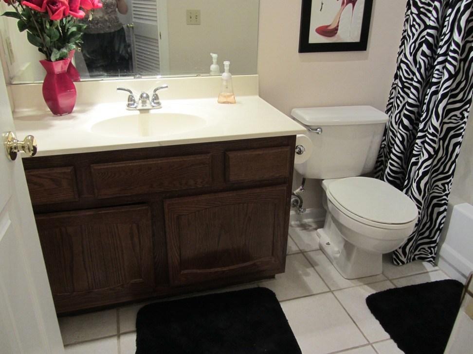 Small Apartment Bathroom Remodel Ideas