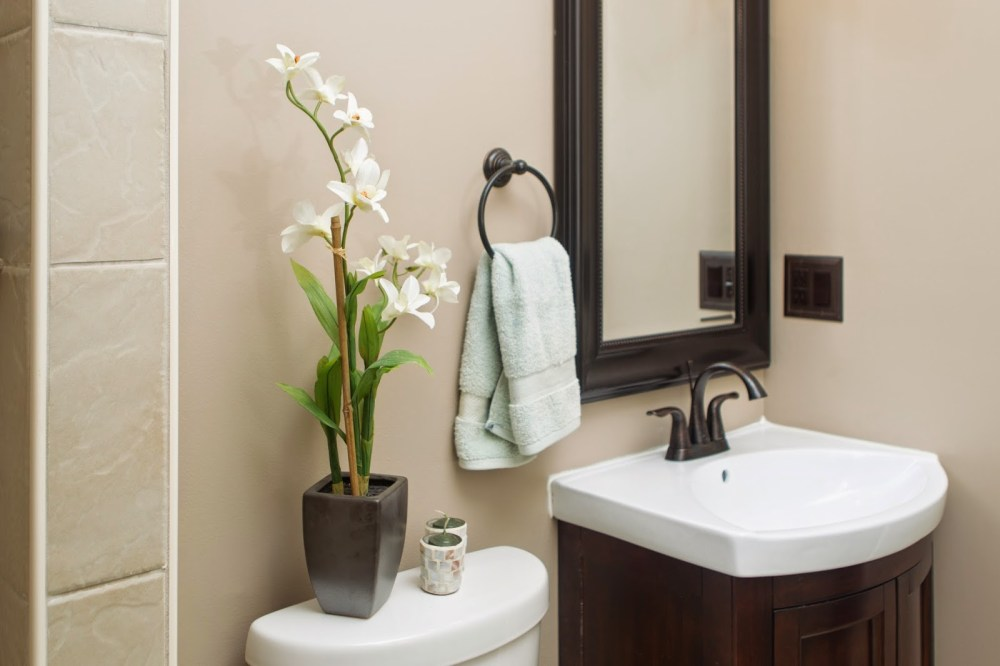 Small Bathroom Paint Ideas No Natural Light