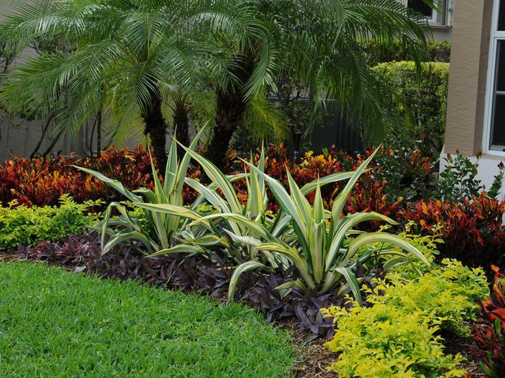 South Florida Landscaping Images