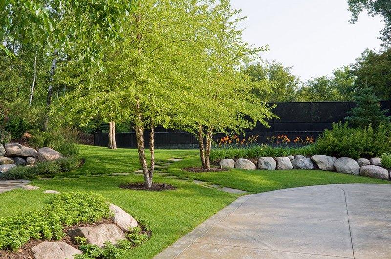 Tree Landscaping Ideas