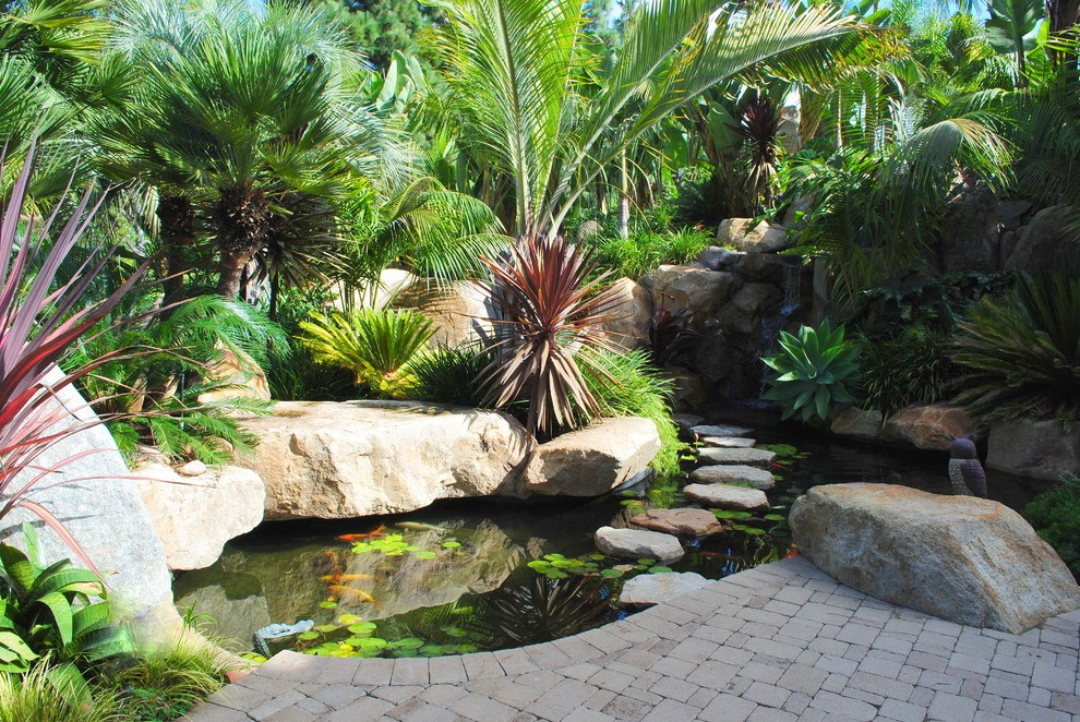 Tropical Landscape Ideas San Diego