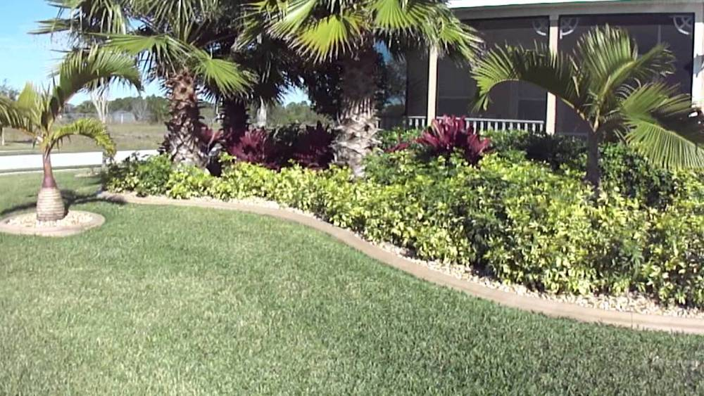 Tropical Landscaping Ideas Small Front Yard
