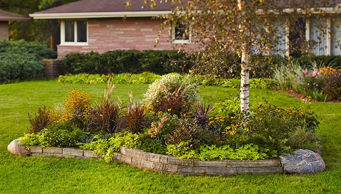 Under Tree Landscaping Ideas
