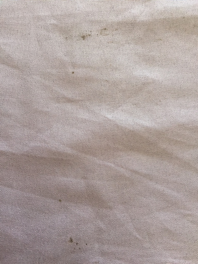 Bed Bug Bites On Toddler