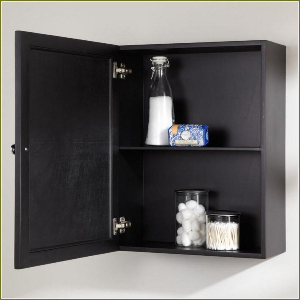 Medicine Cabinet Shelves Plastic