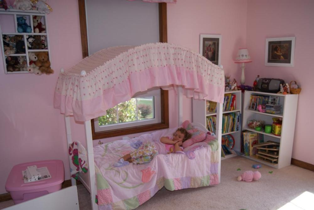 Princess Toddler Canopy Beds
