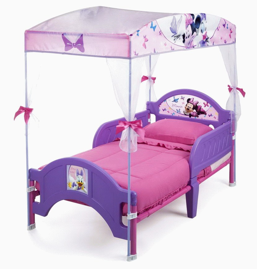 Toddler Bed Canopy Girl