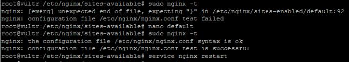 nginx command