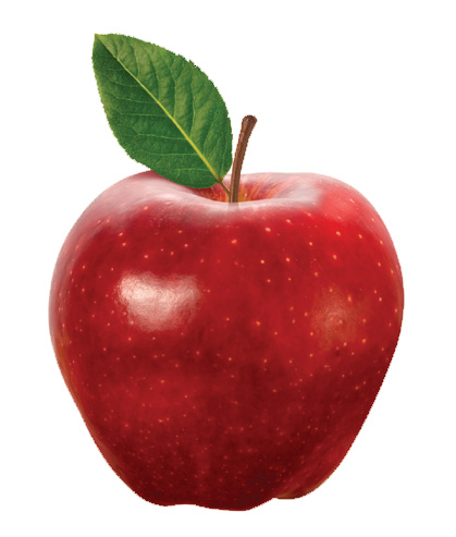 An Apple A Day Vassar The Alumnae I Quarterly