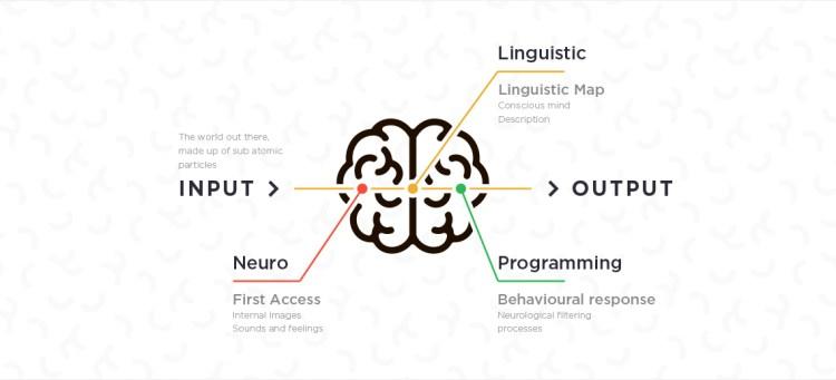 Menselijk brein met uitleg wat NLP is