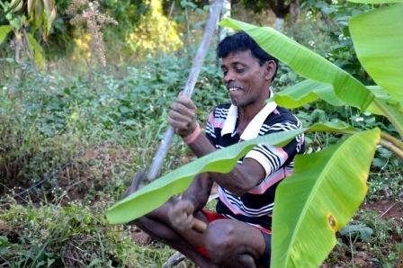 Barkhu (lead)