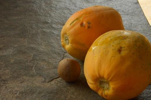 vrindavan farm, fresh produce, natural