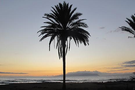Yoga & Kirtan Retreat Tenerife (Canary Islands). 9th-15th July 2017