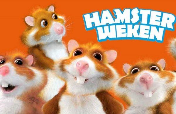 Hamsterloze zelfbedieningskassa
