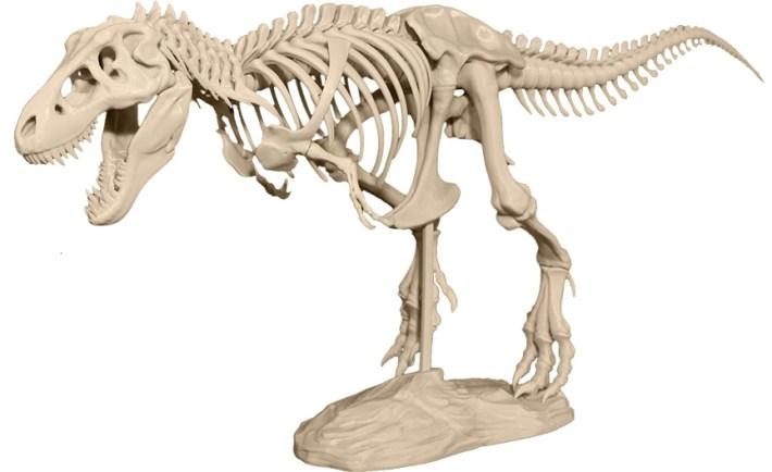 3D Printing TRex