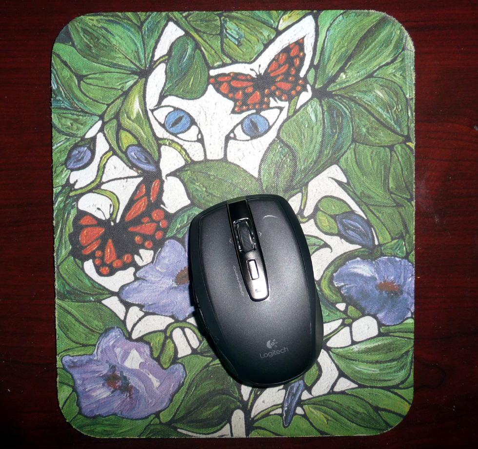 mouse on pad